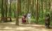 Barrierefrei in den Wald, Rohlstuhlfahrerin unterhält sich mit Seniorenpaar