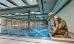 Schwimmbad im Bad-Teplitzer Thermalium